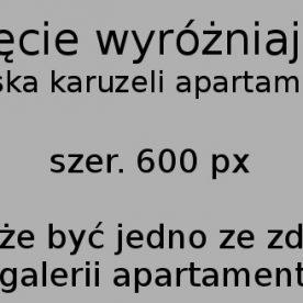 PRZEDSPRZEDAŻ! Nowe apartamenty w Zakopanem